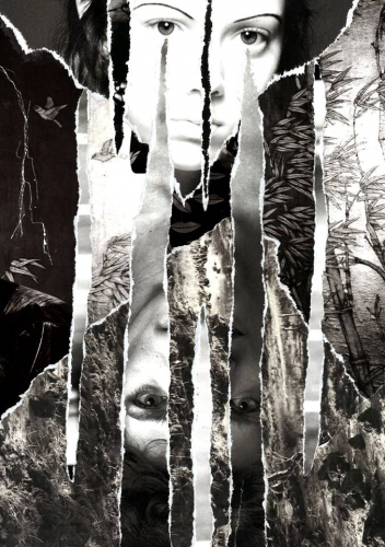 Philippe Naudet Noir et Blanc n°41 collage, 2015_n.jpg