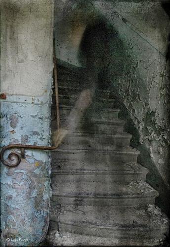 Ineke Kamps Apparition.jpg