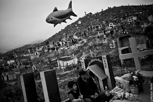 musuk nolte Dias de los muertos 2011.jpg