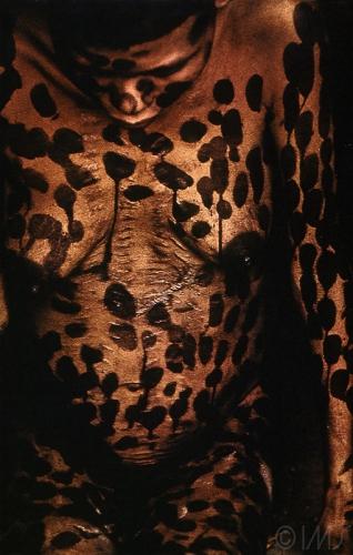 Maureen Bisillia Xingu Tribal territory 0.jpg