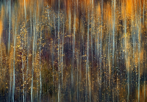 Ursula Abresch An Autumn song late fall.jpg