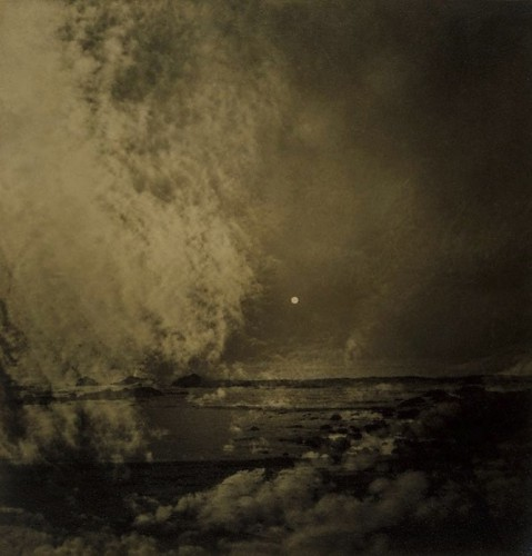 OLive Cotton Sky Submerged 19370.jpg