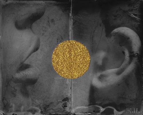 Zelco Nedic 2013 série golden scars.jpg