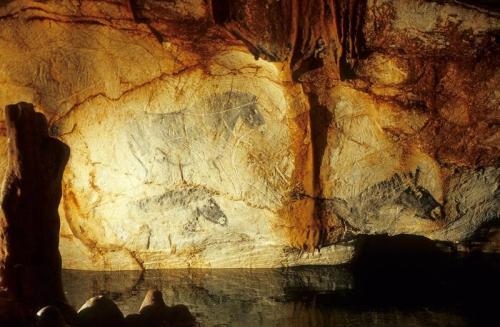 grotte-cosquer-calanque de la triperie marseille.jpg