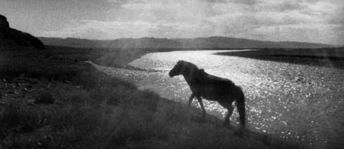 Sophie Zénon Vallée de l'Orkhon, 1997, série Haïkus mongols.jpg