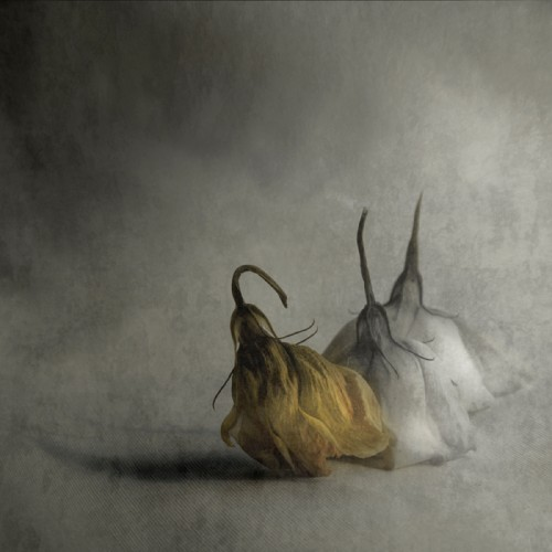 Magdalena Wanli.jpg