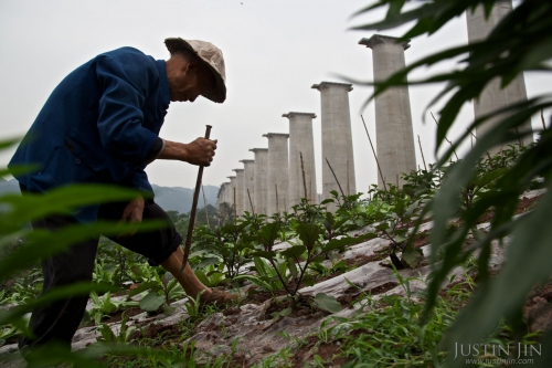 justin-jin-A 71-year-old man grows vegetables under a new bridge on land that used to belong to him in Chongqing..jpg