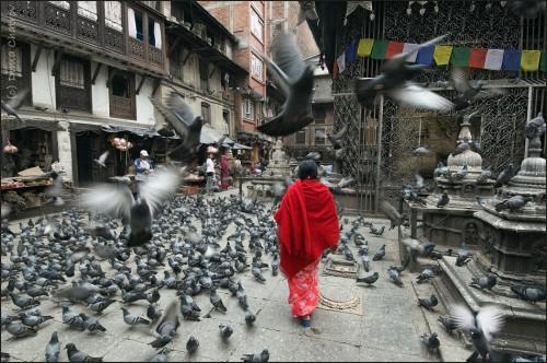 dima chatrov népal katmandu.jpg