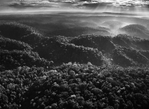 Sebastião Salgado les Awá Amazonie Brésil.jpg