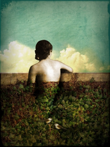 Catrin Welz-Stein the view.jpg