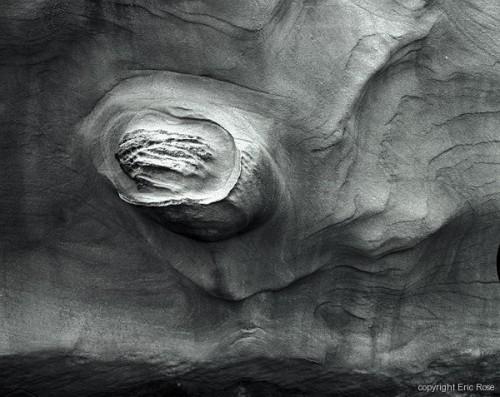 eric rose Coos Bay, Oregon.  Primal #1.jpg