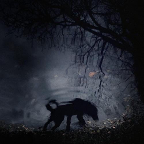 Sebastian Luczywo -photography-the-birth-of-the-beast.jpg