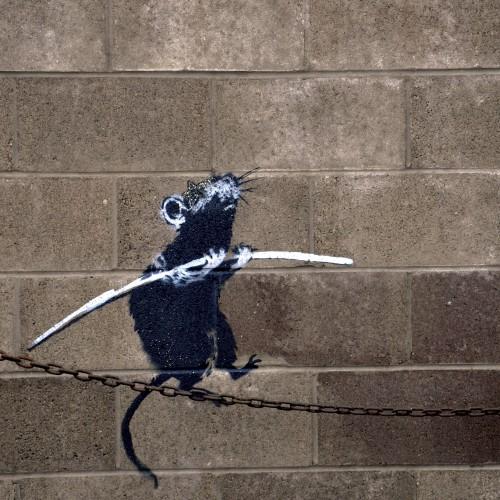 Banksy-Rat-on-Chain-3Wallpapers-iPad-Retina.jpg