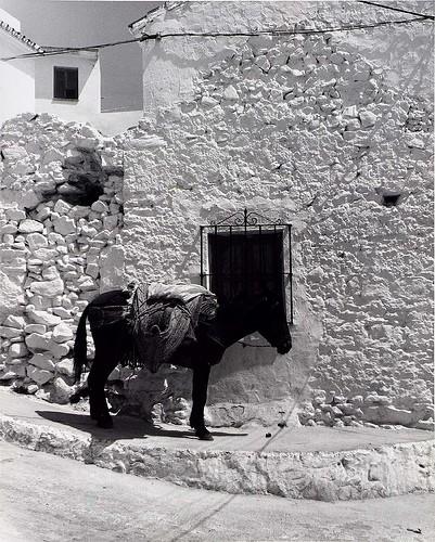 towebb dd Untitled (from series, Spain), 1979.jpg