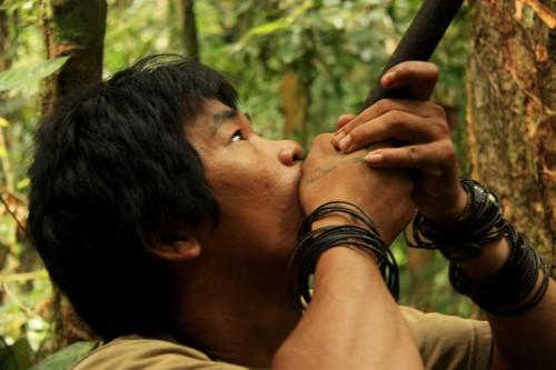 Victor Barro Penan Bornéo.jpg
