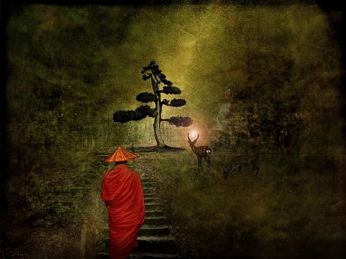 h-kopp-delaney meditation-at-the-deer-park-.jpg