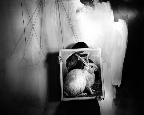 LAUREN SEMIVAN  Black and White Rabbits (2008) .jpg