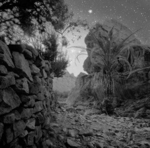 Neil Folberg - First Light, Wadi, Zawatin, 2000..jpg