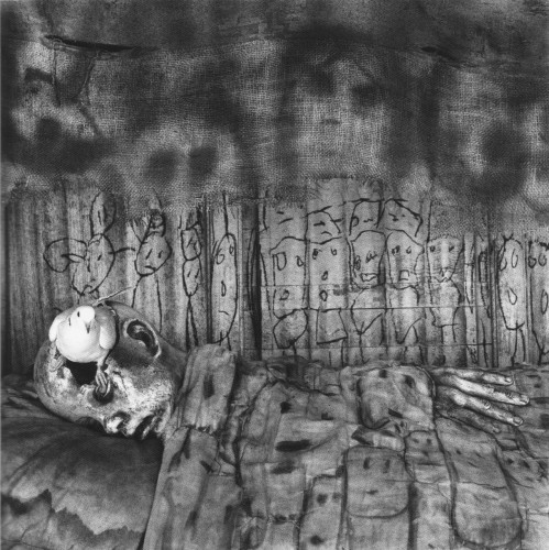 roger ballen asylum of the birds death bed 2).jpg
