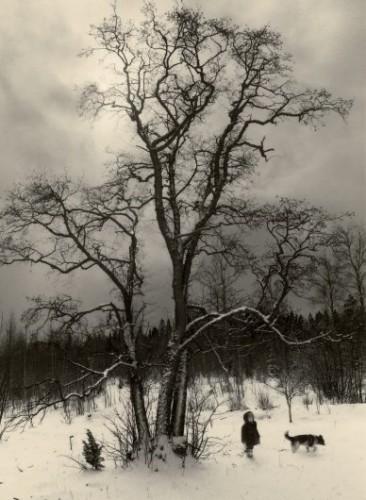 Pentti Sammallahti helsinki 1981.jpg