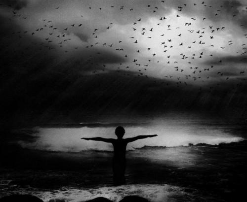 Peter Jamus-Photography9-640x525.jpg