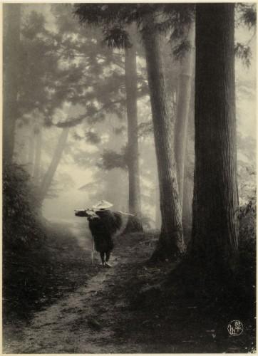KUROKAWA_Suizan_Untitled_ca__1906_650.jpg