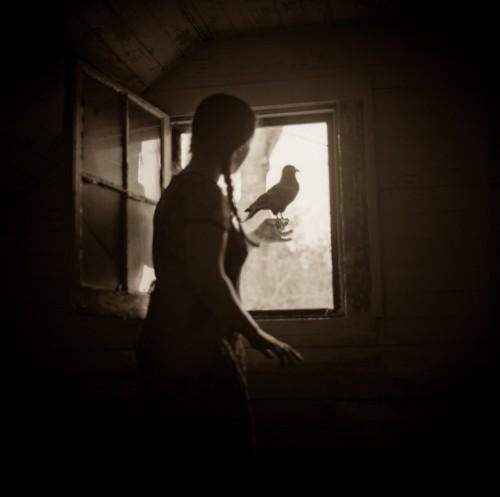Lori Vrba blackbird.jpg
