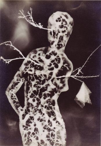 Jindrich Heisler, Untitled (1944), from the series Of the Same Ilk (De la meme farine).jpg