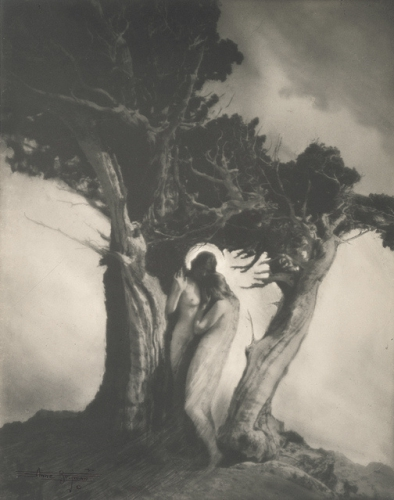 Anne Brigman. The Heart of the Storm 1902. Via geh.jpg
