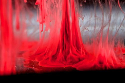 JEN LEWIS Beauty in blood haze.jpg