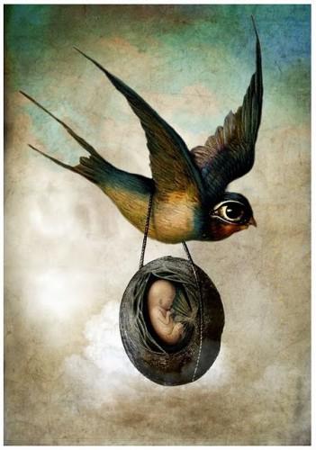 Catrin Welz-Stein precious flight.jpg