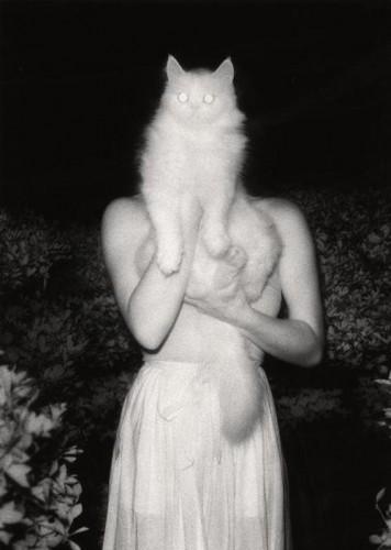 Masaaki Miyazawa Dreams of the Midnight Sun First Night Rêves Dix séries Nuits.jpg