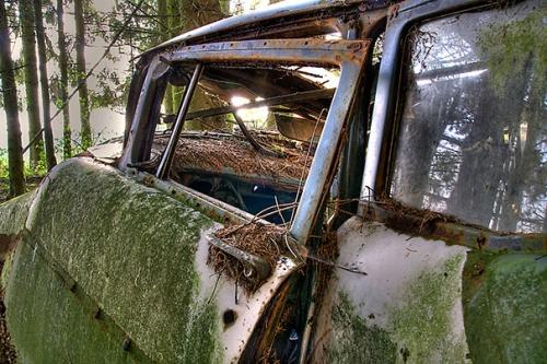 Marcel Wiegerinck chatillon-car-graveyard-abandoned-cars-vehicle-cemetery-12.jpg