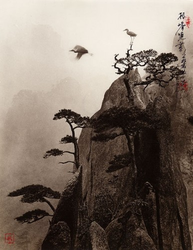 Don Hong-Oai, Pine Peak.jpg