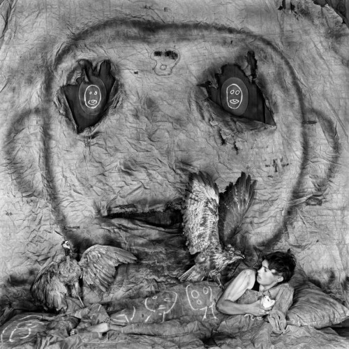roger BALLEN asylum of the birds -900.jpg