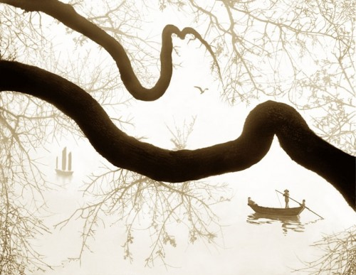 fan ho treewritesitscalligraphy.jpg