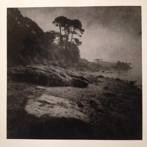 Andrew Sanderson Grebe, Cornwall 2014n.jpg