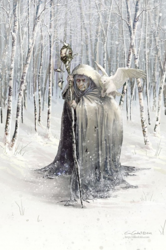 Erin Cantrell Witch of the White Woods.jpg