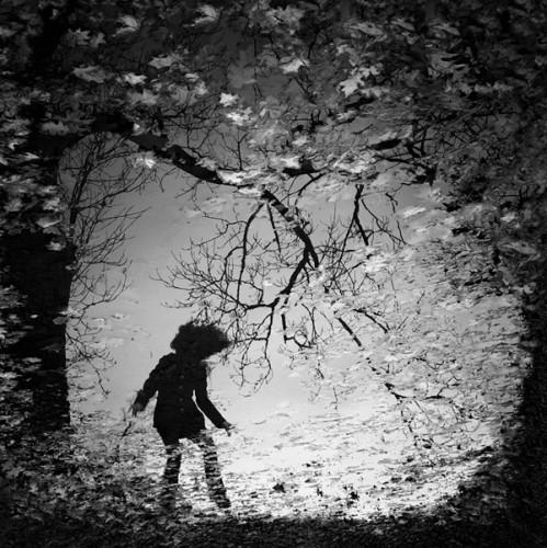 Sebastian Luczywo dancing-black-leaf-.jpg