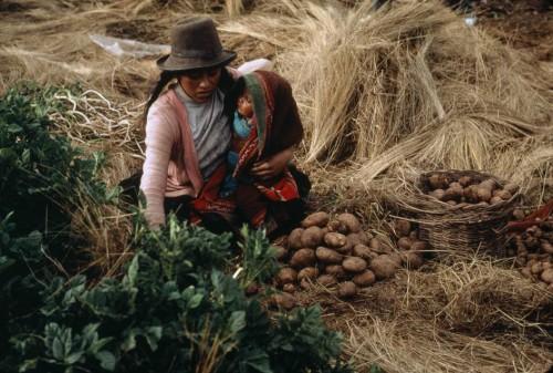 stuart franklin PERU. Kengo near Cuzco planting potato seeds 1991..jpg