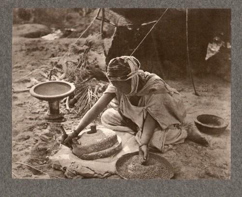 Emile frechon-grain. 1905.jpg