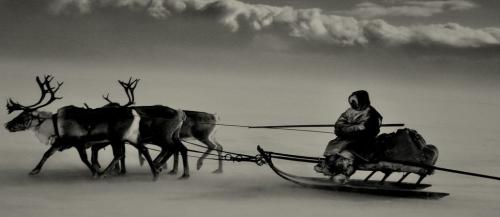 sebastiao salgado inuits.jpg