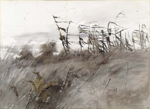 andrew wyeth november 1rstz.jpg