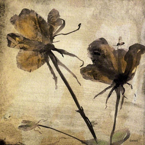Eleonore Weil Flowers of regret 2015.jpg