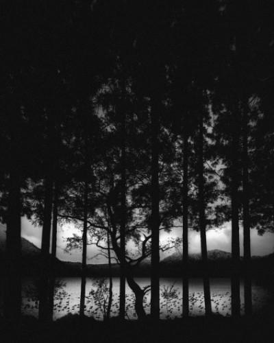 Pentti Sammallahti lac numakawa japon 2005.jpg