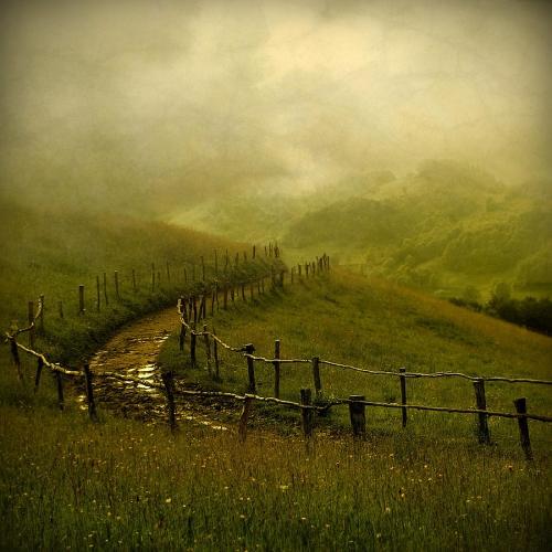 Crina Prida Photograph - Tales From Transylvania .jpg