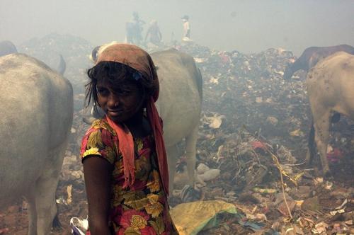 William Brown New Delhi Bhalswa landfill site Inde déc 2016.jpg