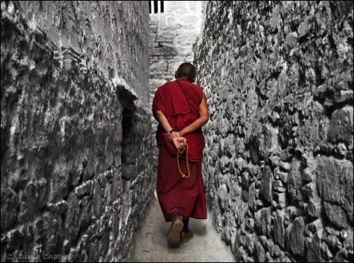 Dima Chatrov Tibet 0.jpg