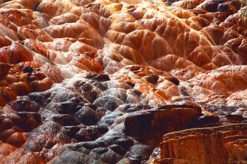 tim navis yellowstone3web_905.jpg