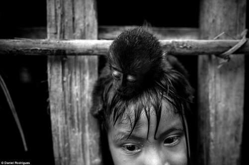 Daniel Rodrigues  Awá_Amazonie Brésil.jpg